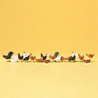 18 poules et coqs -HO-1/87-PREISER 14168
