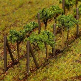 Set de 24 vignes-HO-TT-N-FALLER 181254