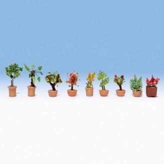 9 Plantes / arbustes en pots - N 1/160 - NOCH 14082