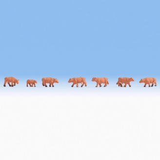 7 vaches marrons-Z 1/220-NOCH 44252