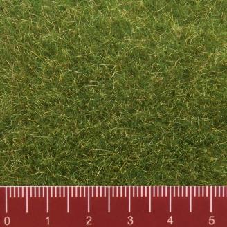 Flocages herbe sauvage 9 mm 50g-Toutes échelles-NOCH 07118