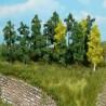 25 arbres à feuilles-Z-N-Heki  1231