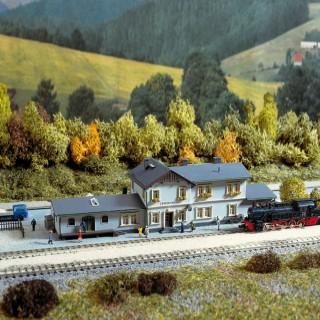 Gare de village-N-1/160-AUHAGEN 14453