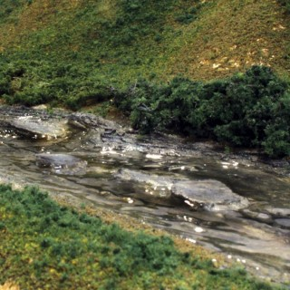 31 petits rochers pour cour d'eau -HO et N-WOODLAND SCENICS C1141