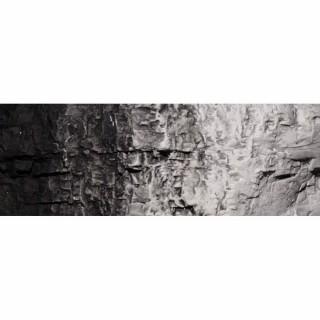 Sous-couche décor noir pour diorama 118ml -WOODLAND SCENICS C1220