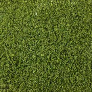 Feuillage vert clair 200ml-HO et N- HEKI 1560
