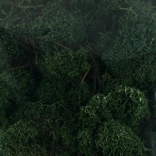 Lichen vert pour diorama 250g -HO et N- HEKI 3231