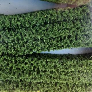 3 haies flexibles vertes foncées pour diorama -HO et N- HEKI 1187