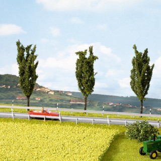 Champ de colza avec touffes d'herbes fleuries -HO et N -NOCH 07420