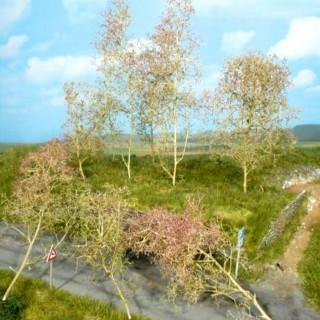 35 arbres naturels-HO-TT-N-Z-Heki 1370