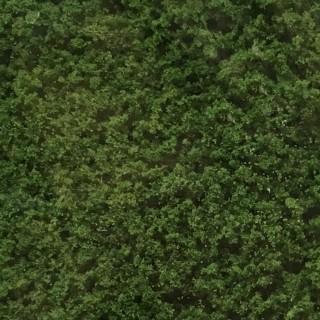Feuillage vert moyen 200ml-HO et N- HEKI 1561