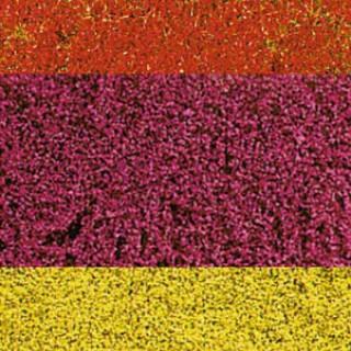 """Tapis floqué étirable """"Fleurs assorties""""-toutes échelles- HEKI 1585"""