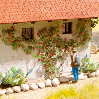 6 plants de rosiers grimpants Laser Cut minis-HO 1/87-NOCH 14118