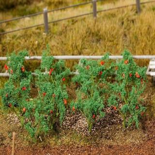 18 plants de tomate-HO-1/87-FALLER 181259