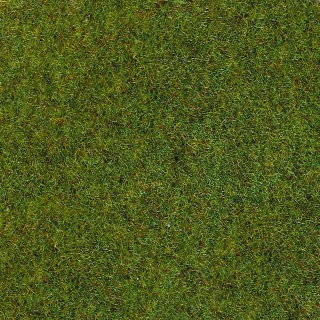 Fibres d'herbes d'été 2.5mm 20g-toutes échelles-HEKI 3354