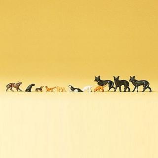 11 chiens de tailles diverses-N-1/160-PREISER 79122