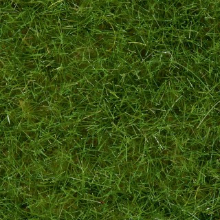 Pot d'herbe sauvage 6mm - 100g-HO 1/87-NOCH 07092