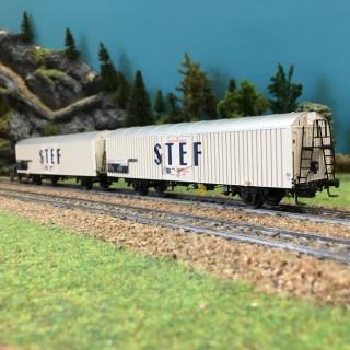 Coffret de 2 wagons couverts STEF SNCF ép IV-HO-1/87-LSMODELS 30228