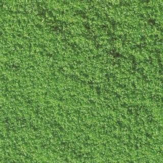 Pot de flocage vert 30g-Toutes échelles-NOCH 07241