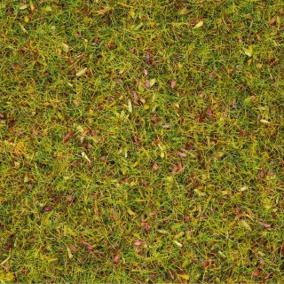 Pot de flocage herbes 2.5mm 120g-HO N-NOCH 08155