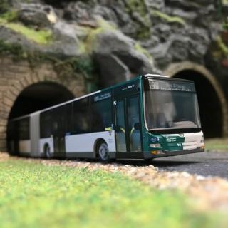 Bus MAN Lion's City G '15-HO-1/87-RIETZE 72767