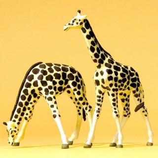 2 Girafes-HO 1/87-PREISER 20385