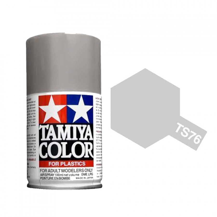 "Argent Métal ""MICA"" Brillant Spray de 100ml-TAMIYA TS76"