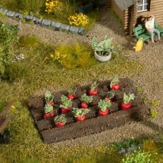 12 plants de Betterave-HO 1/87-NOCH 13221