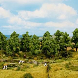 16 arbres feuillus 10 - 14 cm de haut-HO 1/87-NOCH 24601