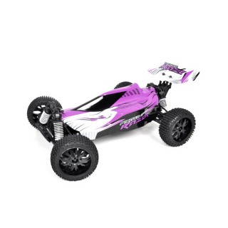 Buggy Pirate Razor Violet 4WD électrique, RTR - 1/10XL - T2M T4910