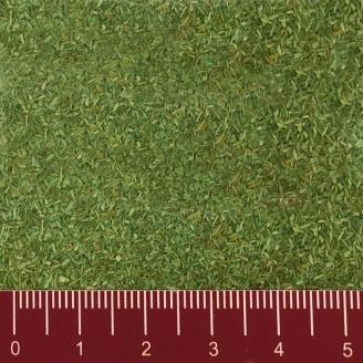 Flocage vert clair 165g-Toutes échelles-NOCH 08411