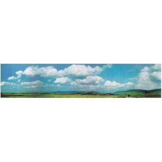 """Décor de fond """"Forêt Noire""""-N-1/160 et HO 1/87-FALLER 180511"""