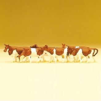 6 Vaches Marrons et Blanches- N 1/160 - PREISER 79155