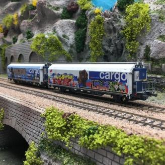 "2 wagons HBBILLS-uy SBB CARGO ""Tagués"" Ep VI-HO 1/87-MABAR GHO01"
