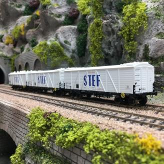 3 Wagons TP FRIGO Reconstruits SNCF STEF Ep III-HO 1/87-REE WB586